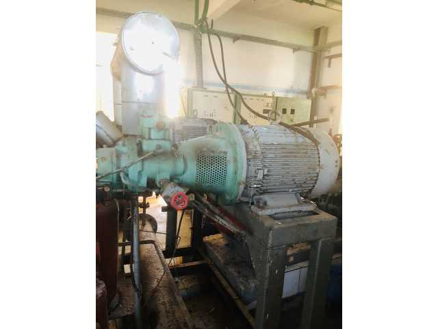 Leilão de 02 compressores de parafuso, sistema helicoidal para funcionamento com gás (amônia), acoplados a motores elétricos de 40CV.